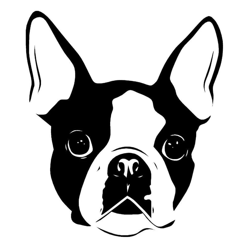 Boston Terrier Face Car Dog Decal Sticker