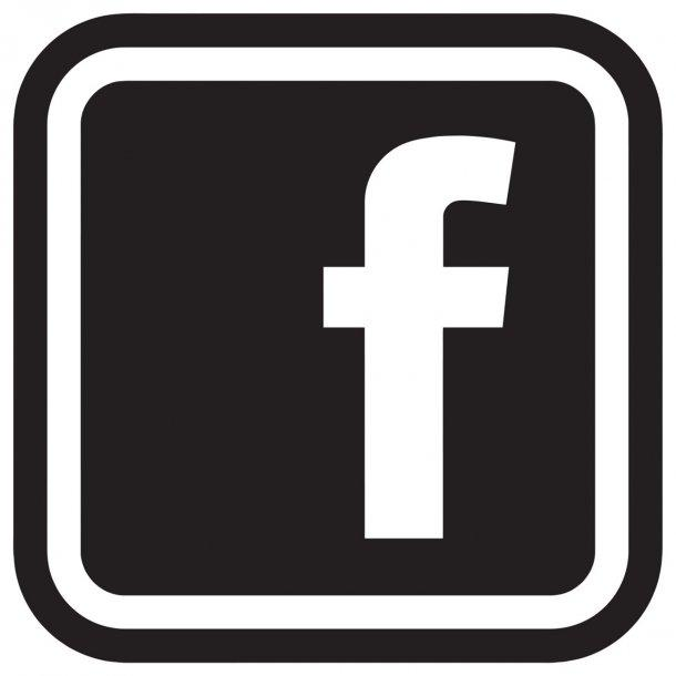 Facebook Logo Decal Sticker