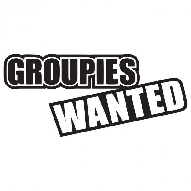 Groupies Wanted Decal Sticker