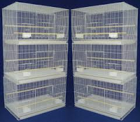 Econo CAGES - 6 per box