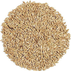 CANARY SEEDS PLAIN 50LBS