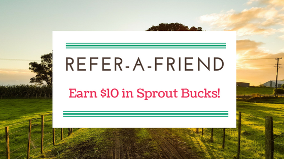 Tell Your Friends About Sprout and Get Rewarded!