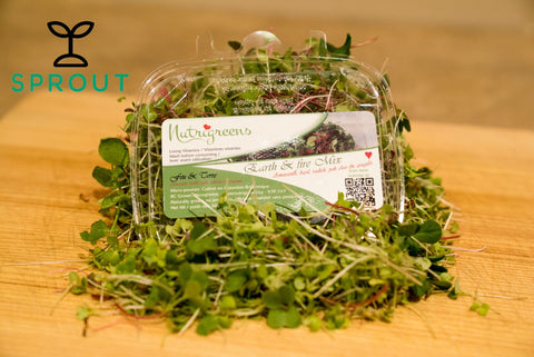Micro Greens - Sprout Farm Delivery