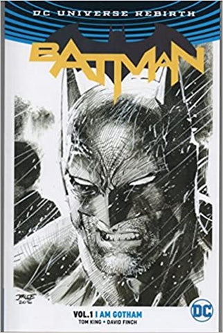 Batman Vol 1 - I Am Gotham (Sketch Cover)