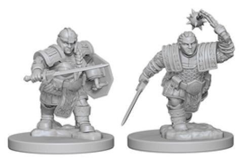 Dungeons & Dragons Nolzur`s Marvelous Unpainted Miniatures: W2 Dwarf Female Fighter