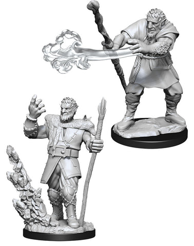Dungeons & Dragons Nolzur`s Marvelous Unpainted Miniatures: W11 Male Firbolg Druid