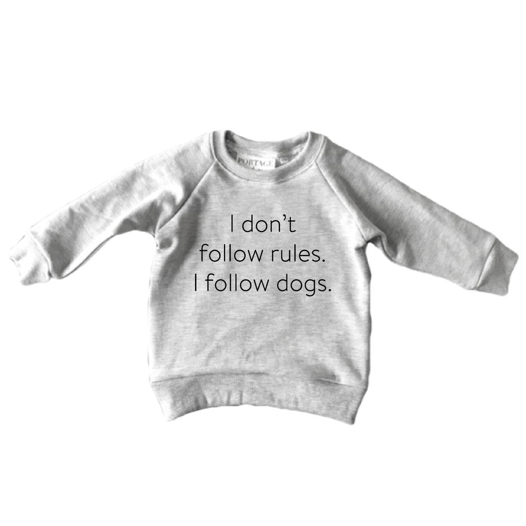 THE I DON'T FOLLOW RULES RAGLAN - LittleLeafBaby