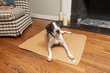 The Many Uses of Pet Parents® Pawtect™ Pads