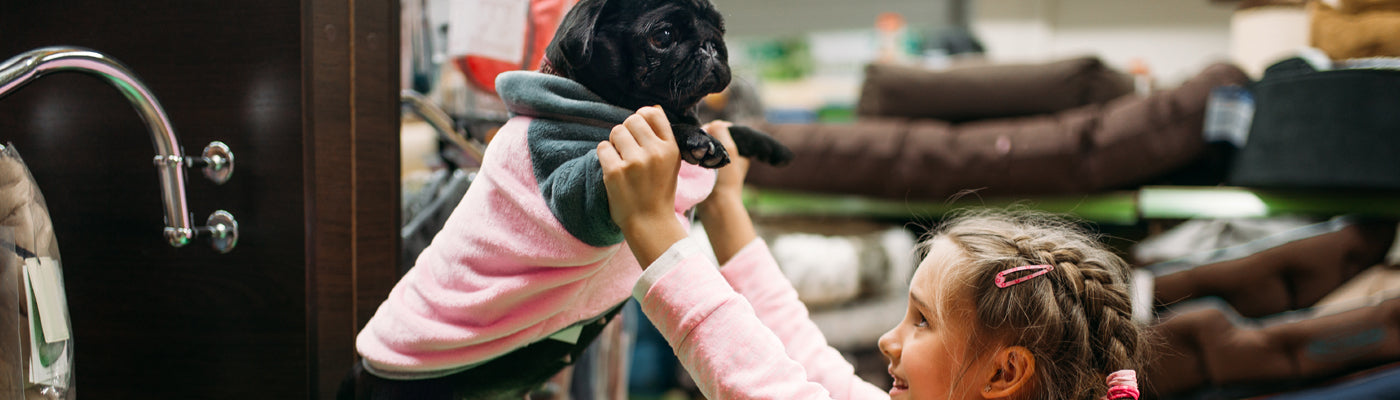 How to Increase Sales in your Pet Store