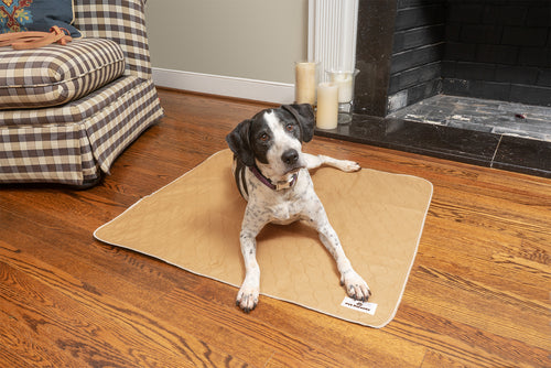 Pads for Indoor Potty Training