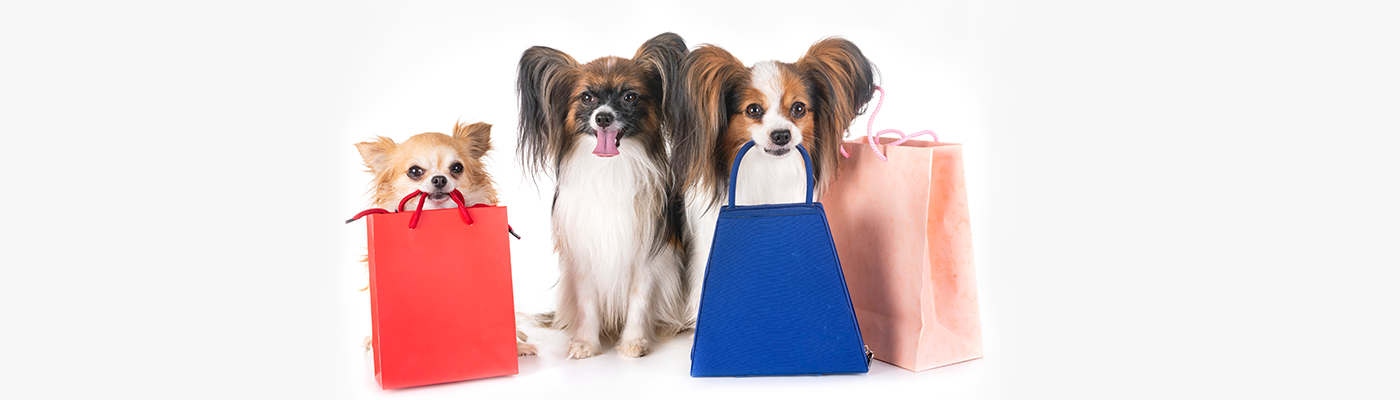 Top 10 Merchandising Tips for your Pet Store