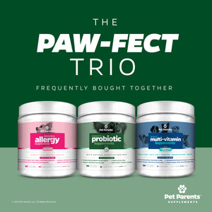 USA PRE & PROBIOTICS FOR DOGS 4G 90C - 5.5B CFUS/CHEW – DOG DIGESTIVE HEALTH – ENZYMES, PUMPKIN FOR DOGS, PAPAYA & CANINE PROBIOTICS + DOG PROBIOTICS