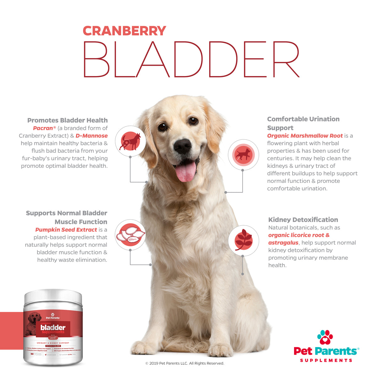 USA UTI In Dogs Supplement | Dog UTI Treatment Treats | Bladder Infection In Dogs & Bladder Stones Help with Pacran® | 4g 90Count Soft Chews