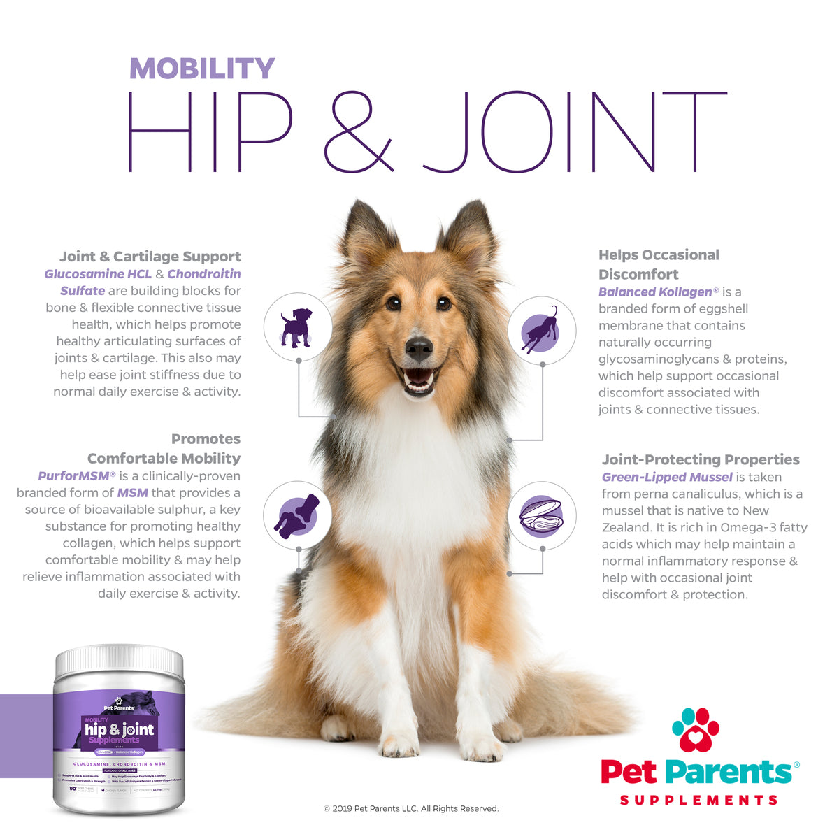 SoftSupps™ USA Hip & Joint Supplements for Dogs