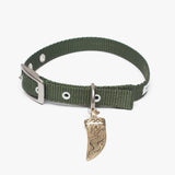 The Standard Plus - Medium Collar