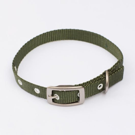 The Standard Dog Collar