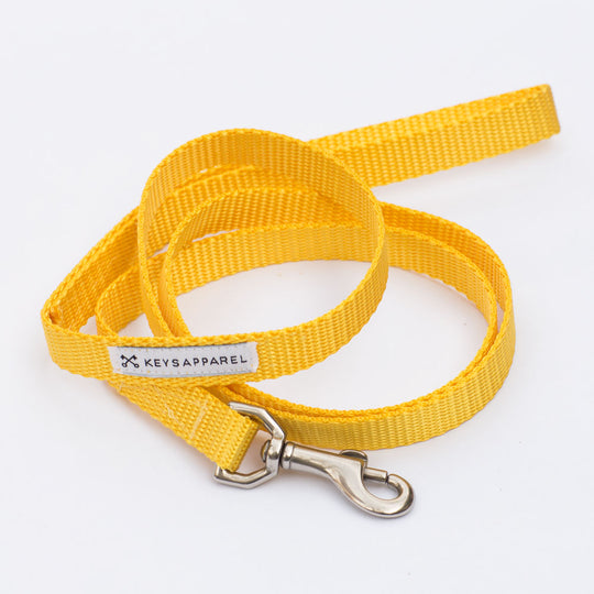 The Standard Dog Leash