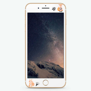 Mr Fox Artistic Skin Screen Protector For iPhone