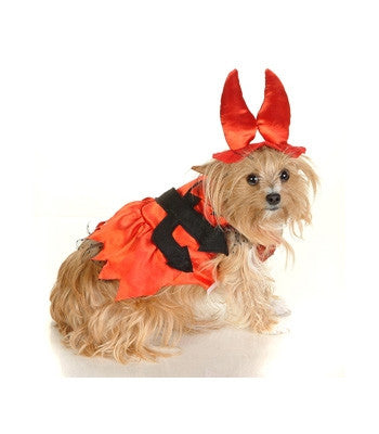 Little Devil Dog Costume