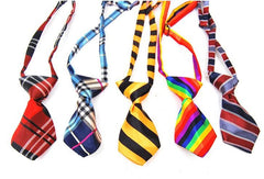 Patterned Dog Ties - Miami Pooch Pet Boutique