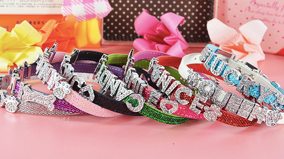 Bling Personalized Dog Collar