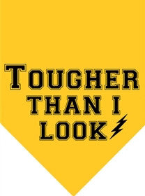 "Yellow ""Tougher Thank I Look"" Dog Bandana - Miami Pooch Pet Boutique"