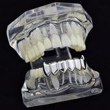 Silver Tone 6 Teeth Bottom Fangs Grill - FANATICS365