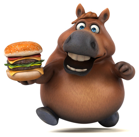Horse with Burger