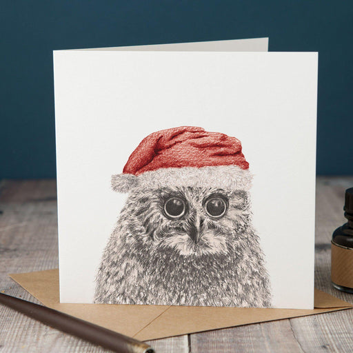 Christmas Peeping Owl Card-Lucy Coggle