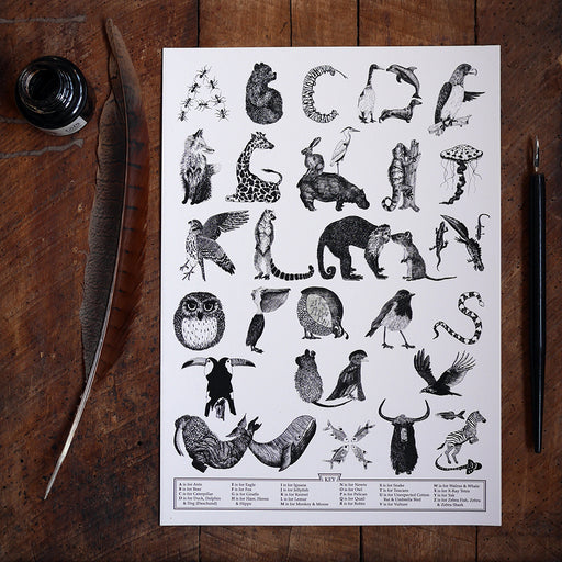 animal alphabet pen and ink drawing