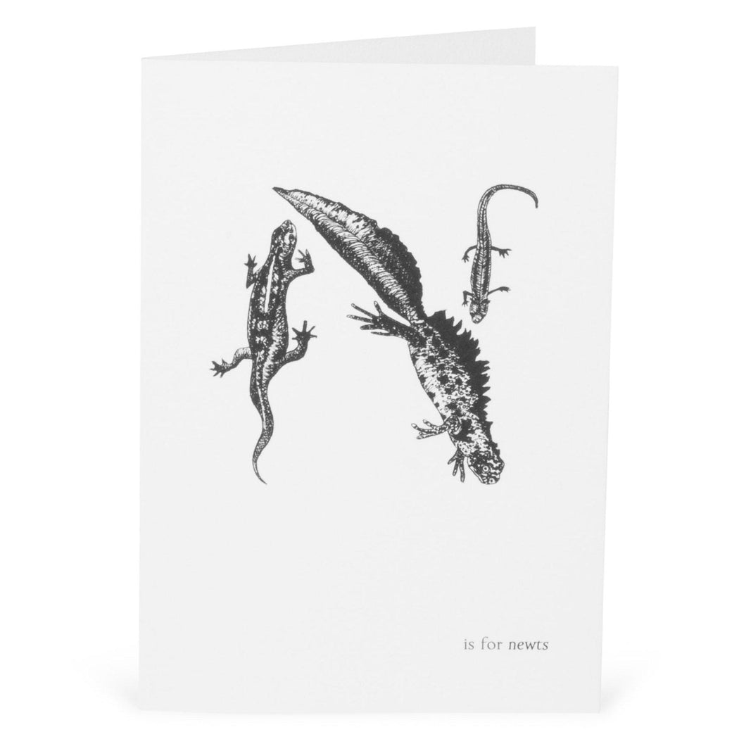 N is for Newts Card-Lucy Coggle