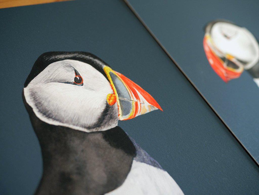 Pair of Atlantic Puffins Prints-Lucy Coggle