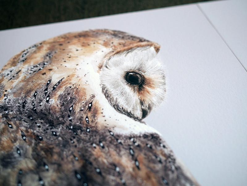 Pair of Barn Owls prints-Lucy Coggle