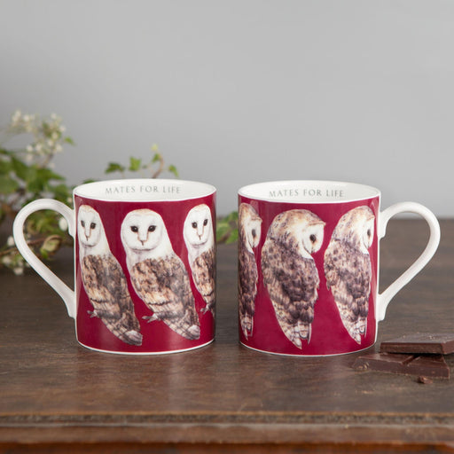 Pair of Bone China Barn Owl Mugs-Lucy Coggle