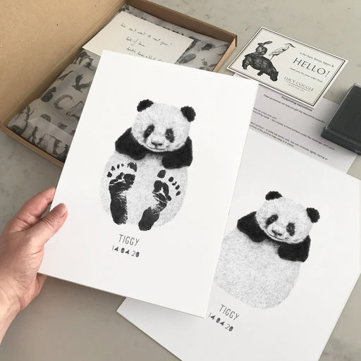 Panda footprint kit box