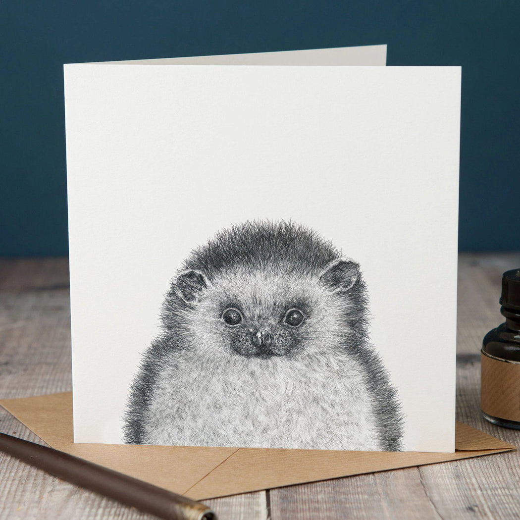 Peeping Hedgehog Card-Lucy Coggle