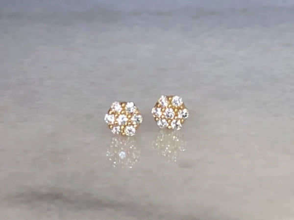 Flower Stud Earrings | Screw Back Earrings | Solid Gold Hypoallergenic Jewelry | Helix, Cartilage | Two of Most Fine Jewelry