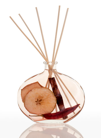 Natures Gift Spiced Apple Reed Diffuser