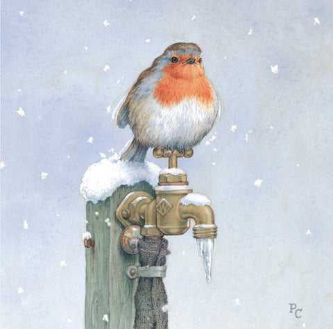 'Robin on Tap' Christmas Card