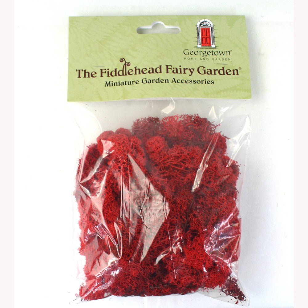 Fiddlehead Red Moss