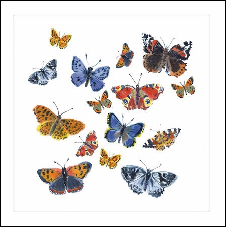 Woodmansterne card - Butterflies
