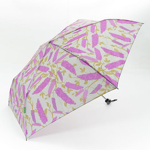 Buddleia Mini Umbrella