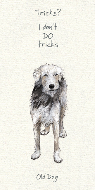 Old Dog -  Greeting Card