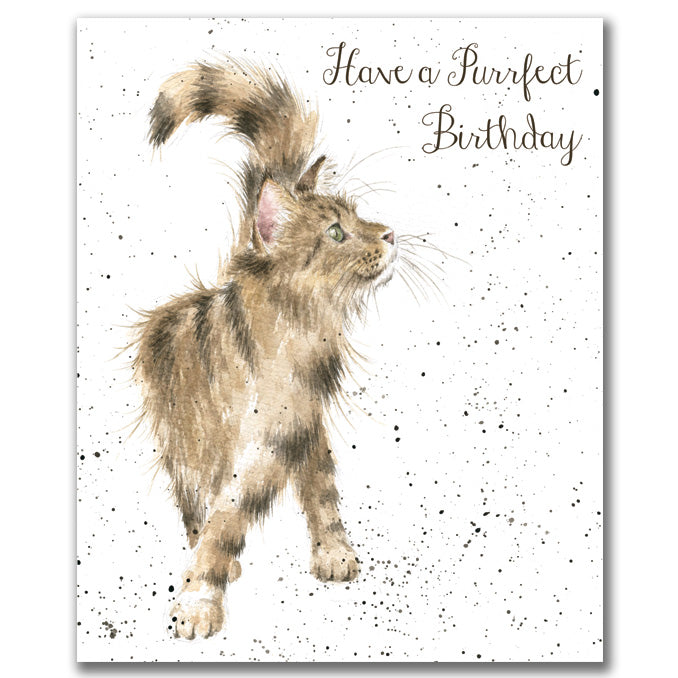 Just Purrfect Greeting Card