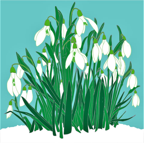 Umbellifer Greeting Card Snowdrops