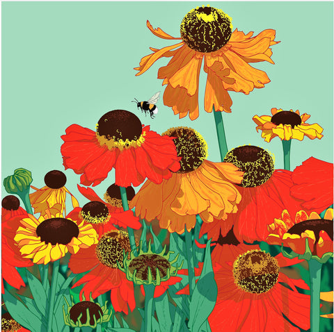 Umbellifer Helenium  greeting card
