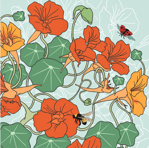 Umbellifer Nasturtium  greeting card