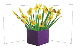 3D Pop up Card - Daffodils