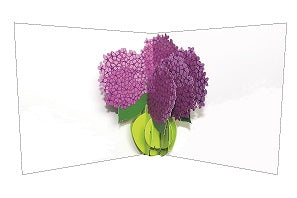3D Pop up Card - Hydrangeas