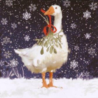 Christmas Card Goose & Mistletoe